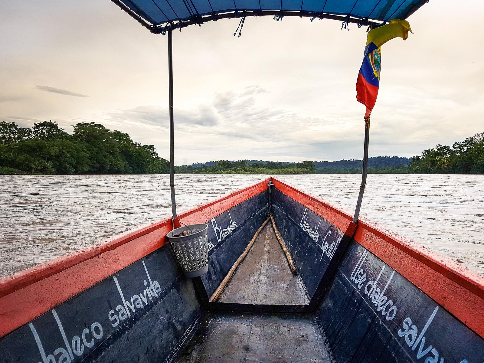 mono-500-equateur-amazonie_-10